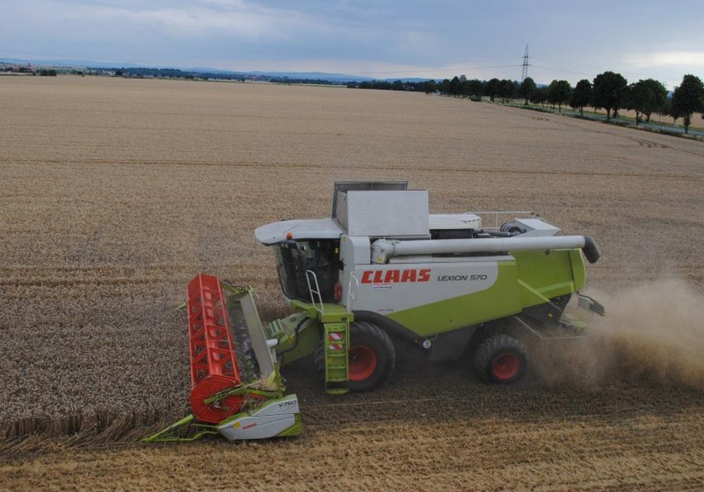 Gerste ist die erste Getreidesorte, die in Niedersachsen von den Feldern geholt wird. Während die Wintergerste vor allem als Tierfutter dient, ist die Sommergerste als Braugerste ein Rohstoff für die Bierproduktion. Symbolfoto: Marc Angerstein