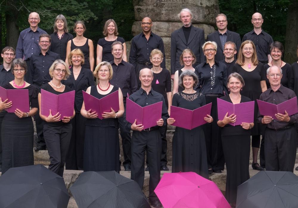 Kammerchor venti voci Braunschweig. Foto: Manfred Hensel