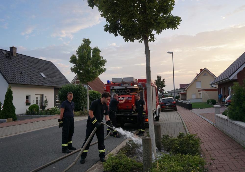 Die Freiwillige Feuerwehr Mörse bewässert einen Baum im Kerksiek. Foto: Freiwillige Feuerwehr Mörse