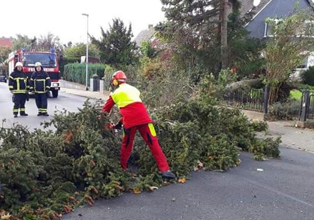 De Sturm ist vorüber. Doch einige Straßen im Landkreis sind noch gesperrt. Symbolfoto: Feuerwehr Wolfenbüttel