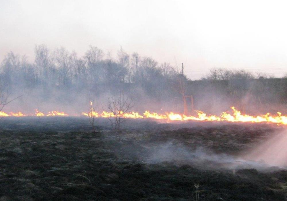 Die Feuerwehr verhinderte schlimmeres. Fotos: Feuerwehr Vechelde/Wahle