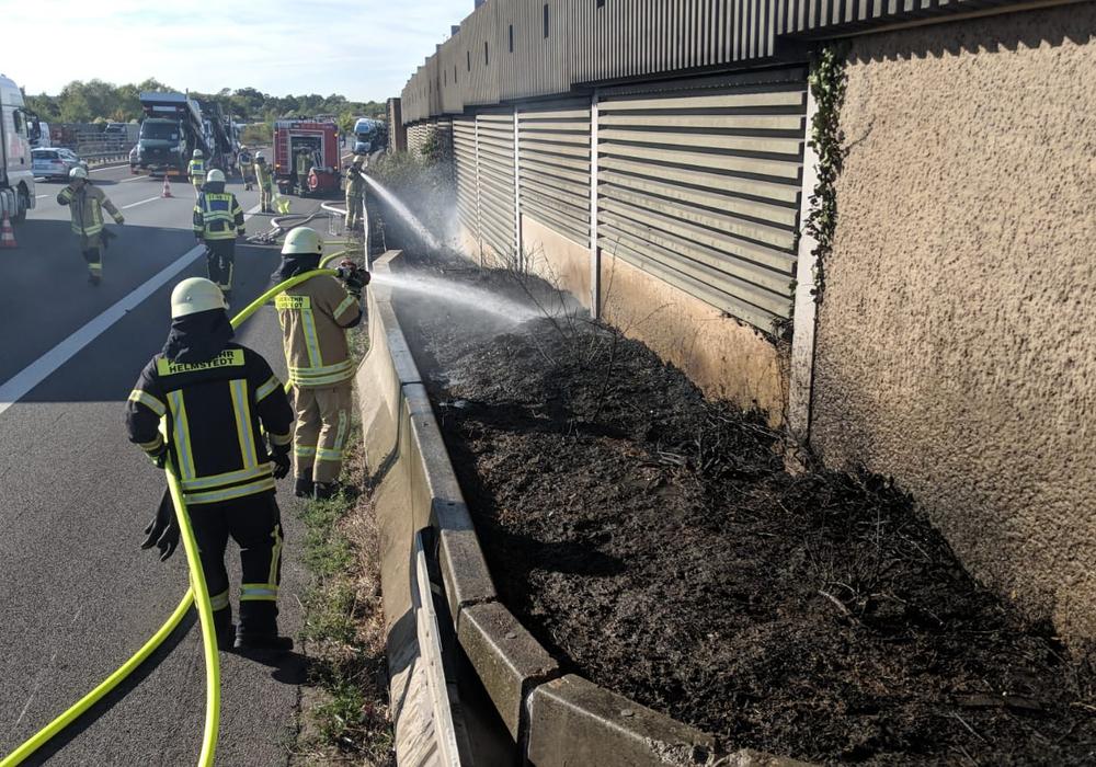 Der Seitenstreifen musste gelöscht werden. Fotos: Feuerwehr Helmstedt