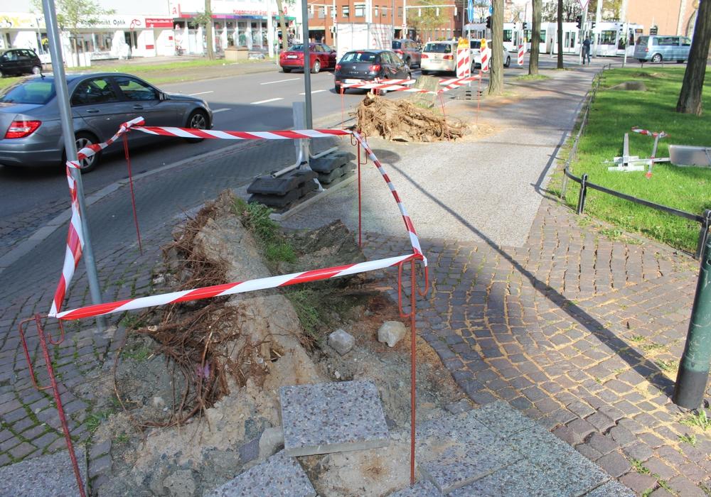 Die Beseitigung der Schäden ist derzeit noch im Gange. Foto: Alexander Dontscheff