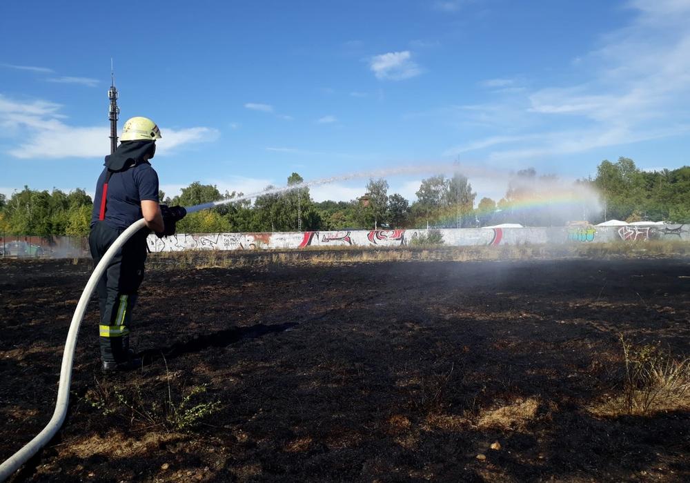 Bilder, die sich in den vergangenen Tagen häufen. Die Trockenheit sorgt für viele Flächenbrände. Fotos: Stadtfeuerwehr-Presse-Team Wolfenbüttel (Hänschen/Stein)