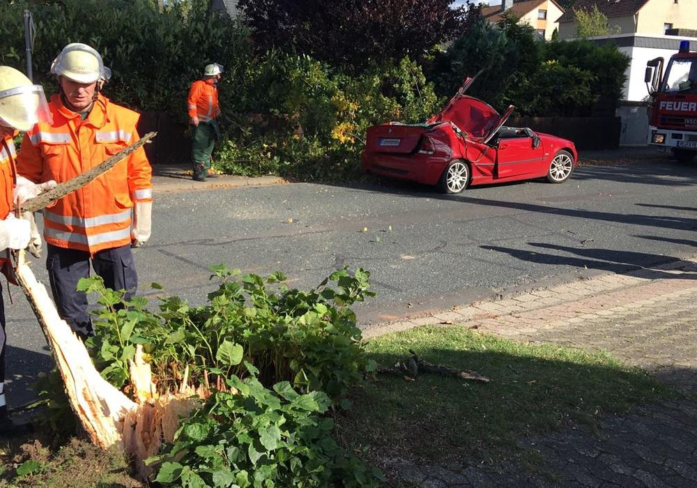 In Peine wurde ein Autofahrer durch einen umstürzenden Baum verletzt. Foto: aktuell24/DC