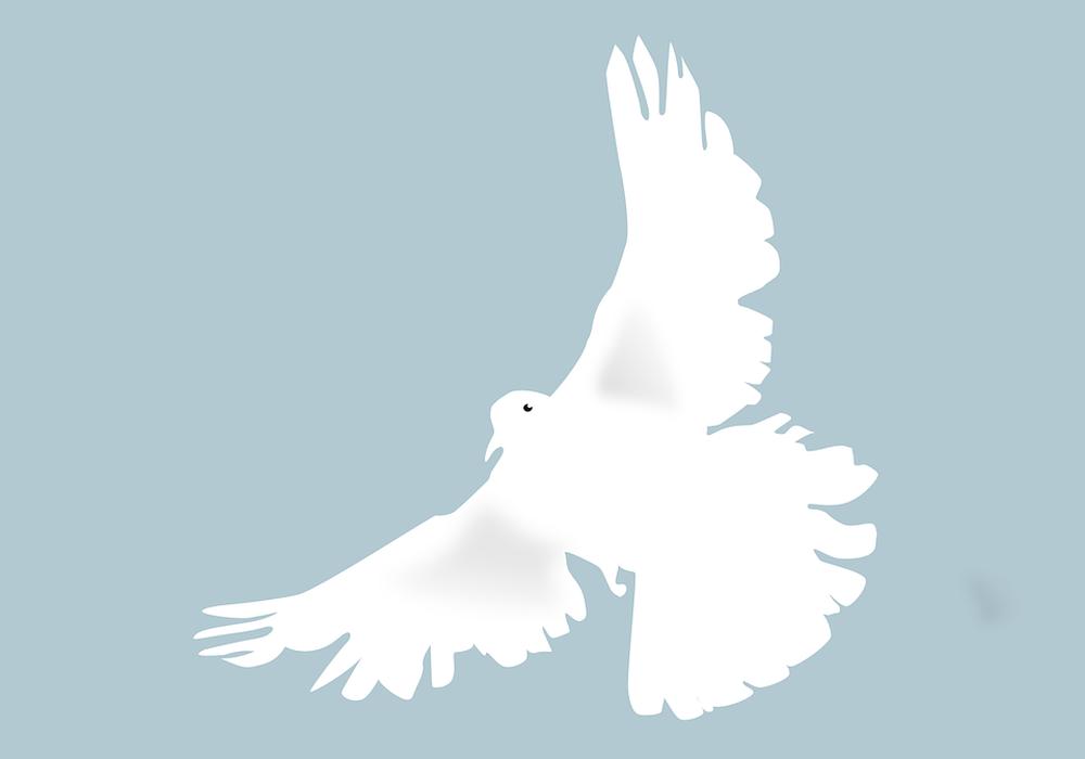 Symbolbild: pixabay