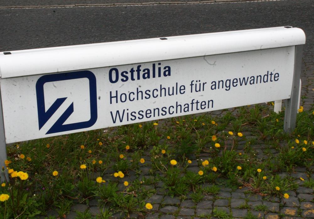 Senkt die Stadt Wolfsburg die Förderung? Foto: Anke Donner