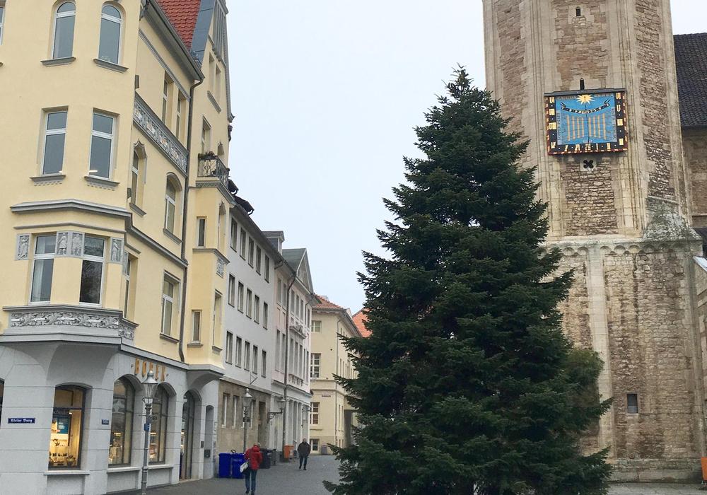 Die erste große Tanne steht. Foto: Braunschweig Stadtmarketing GmbH