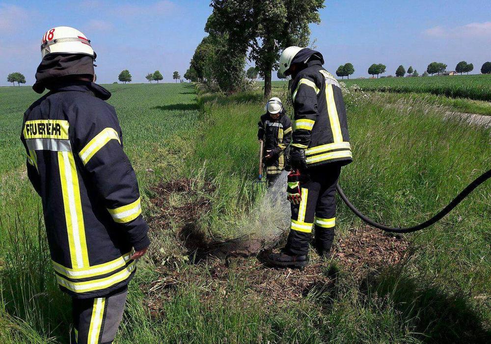 Die Einsatzkräfte bei der Arbeit. Foto: Feuerwehr Wolfenbüttel