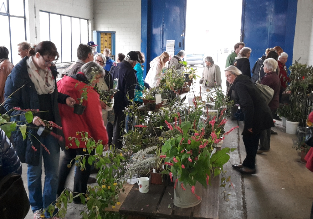 Vormerken: Am 23. September ist Pflanzenbörse. Foto: DRK