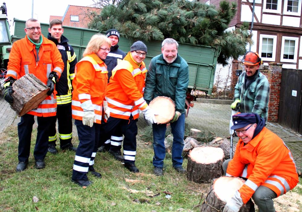 In Roklum wurden zwei Bäume gefällt. Foto: Bernd-Uwe Meyer