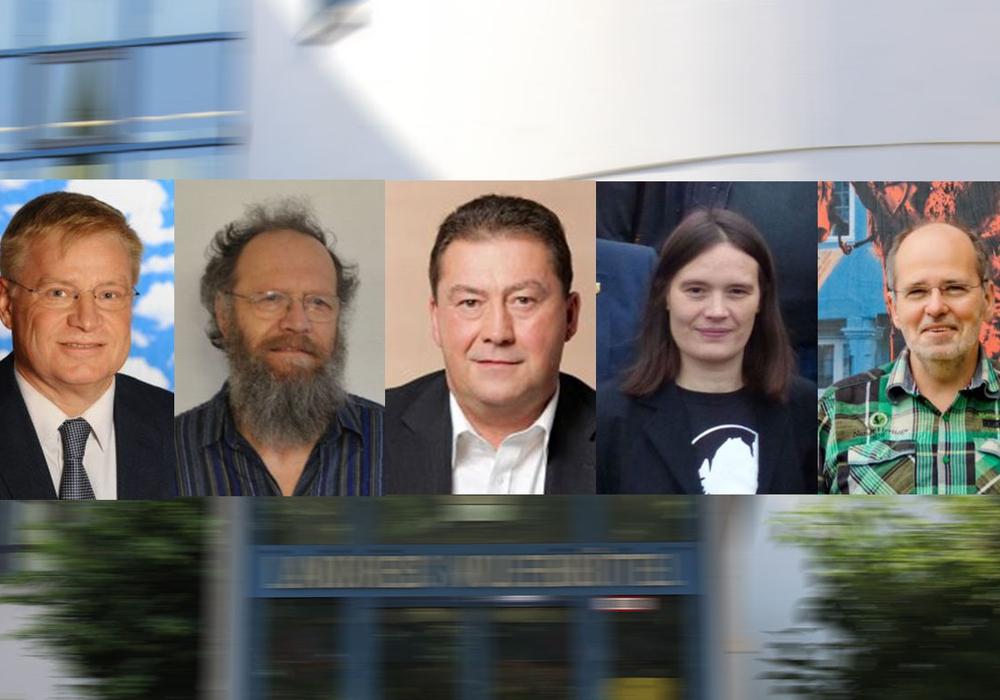 Die in der Asse 2-Begleitgruppe vertretenen Kreistagsmitglieder beziehen Stellung. Fotomontage: Heise / Bilder: Parteien
