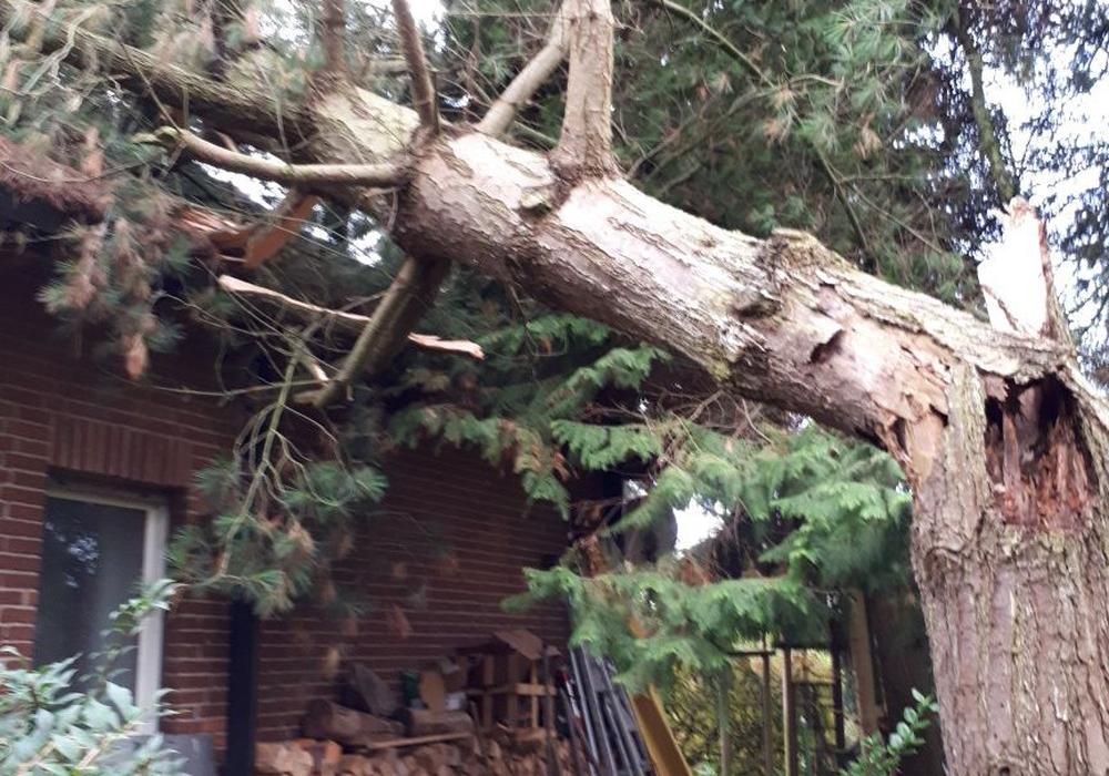 In Meinersen stürzte ein Baum auf ein Haus. Foto: Feuerwehr Meinersen