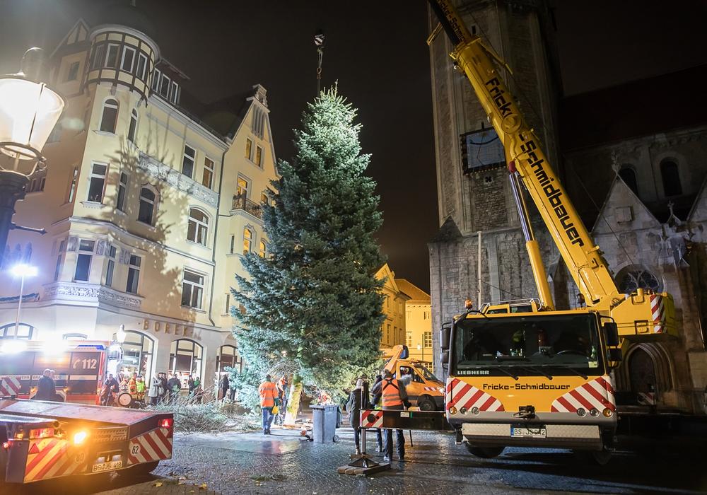 Die Mitarbeiterinnen und Mitarbeiter der Stadtverwaltung stellen den Baum auf dem Domplatz dieses Jahr tagsüber auf, anders als auf dem Bild aus dem Vorjahr. Foto: Braunschweig Stadtmarketing GmbH/Philipp Ziebart