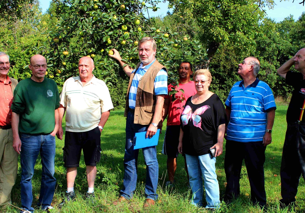 Obst wird versteigert. Foto: Bernd-Uwe Meyer
