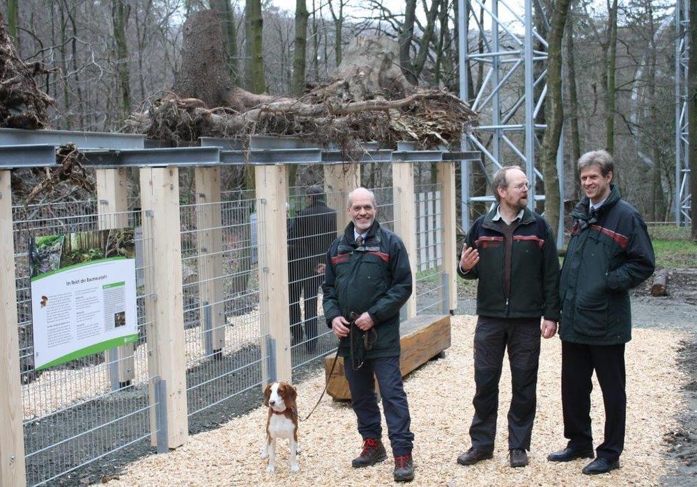 Karsten Peiffer, Jörg Sonnabend und Klaus Jänich bei der Eröffnung des Baumwurzelpfads. Foto: Niedersächsische Landesforsten