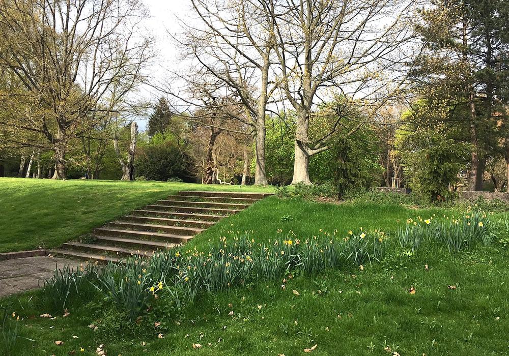 Auch die Zukunft von Viewegs Garten spielt bei den Plänen zur Neugestaltung des Bahnhofsumfeldes eine Rolle. Archivbild