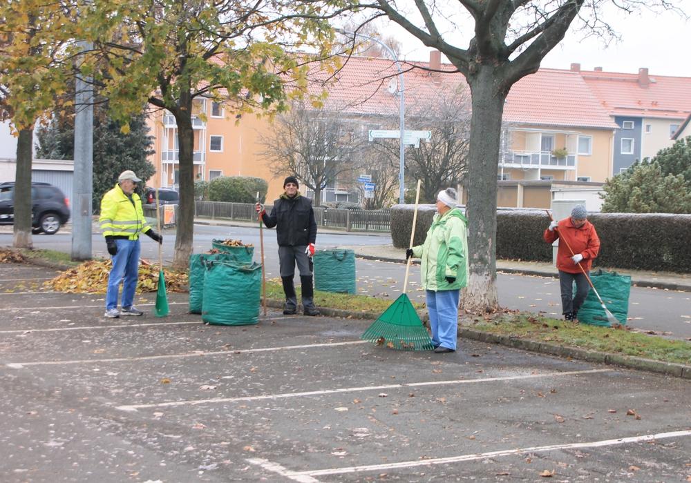 Laubentfernung auf dem angrenzenden Parkplatz des Freibads Schladen. Foto: Privat    Still ruht der See