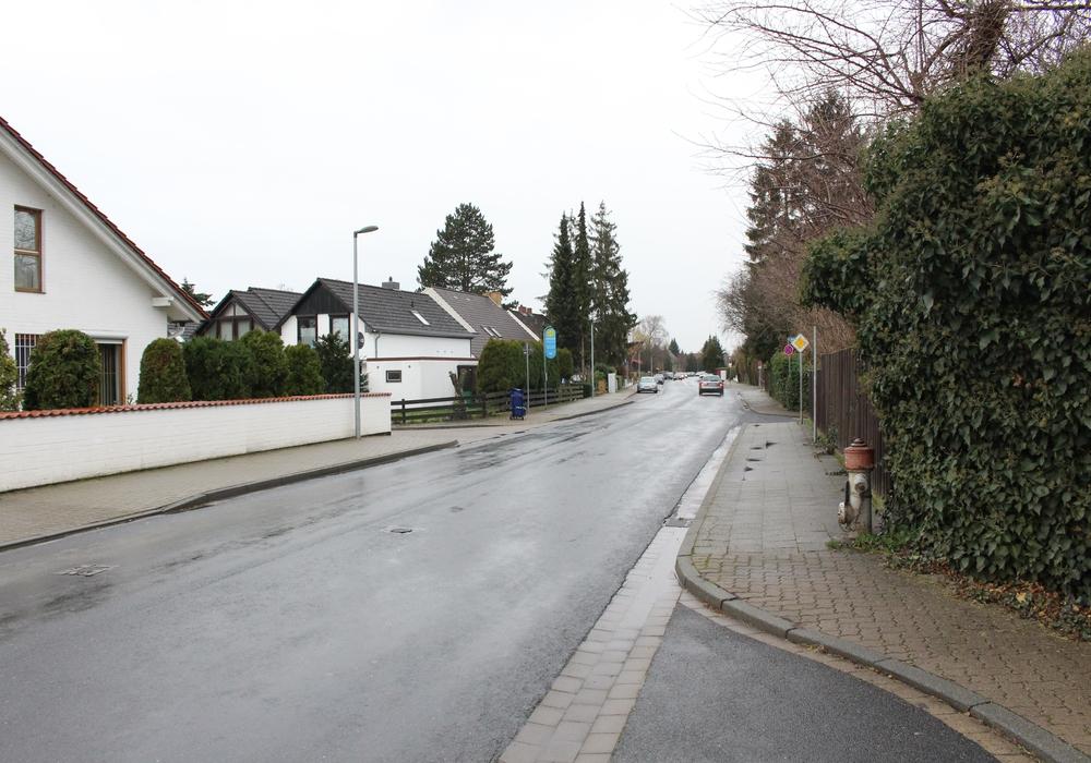 Alter Weg zwischen Mittelweg und Forstweg. Foto: Jan Borner
