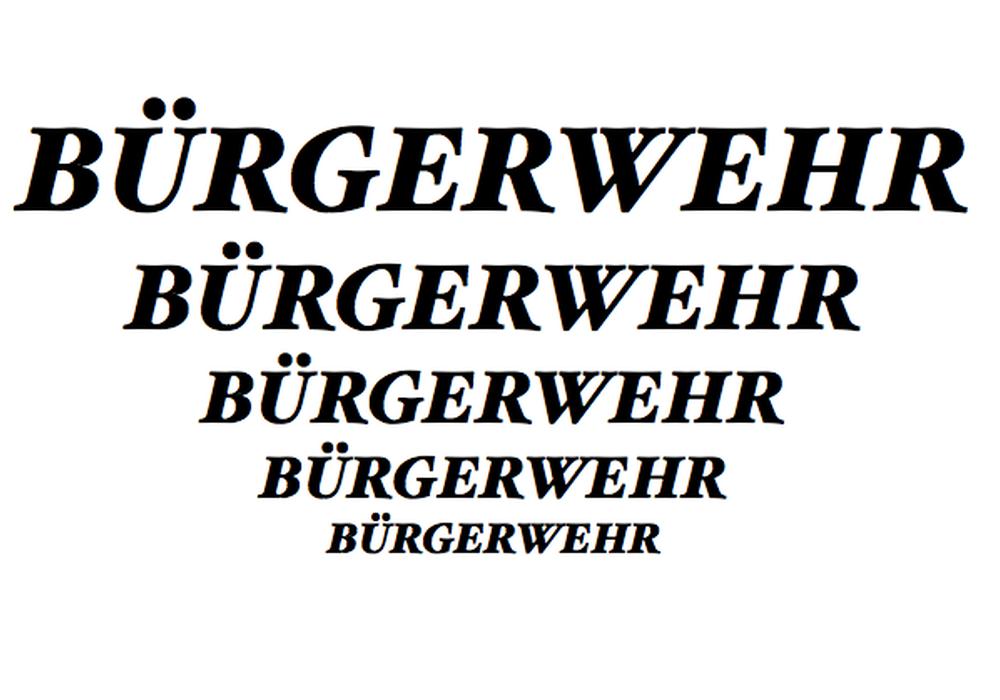 Die Polizei bezieht in einer Pressemitteilung Stellung zu Bürgerwehren, die sich offenbar im Landkreis Goslar bilden. Symbolfoto:
