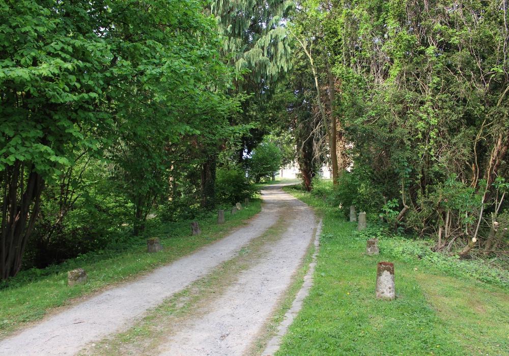Auf dem Weg zur Seeliger Villa soll die Statue ihren Platz finden. Foto: Max Förster