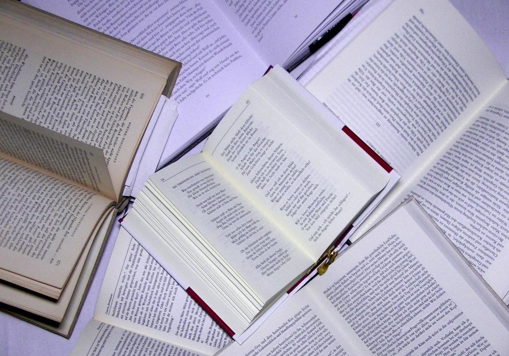 Am Mittwoch trifft sich der Julius-Club in der Bibliothek. Symbolfoto: André Ehlers
