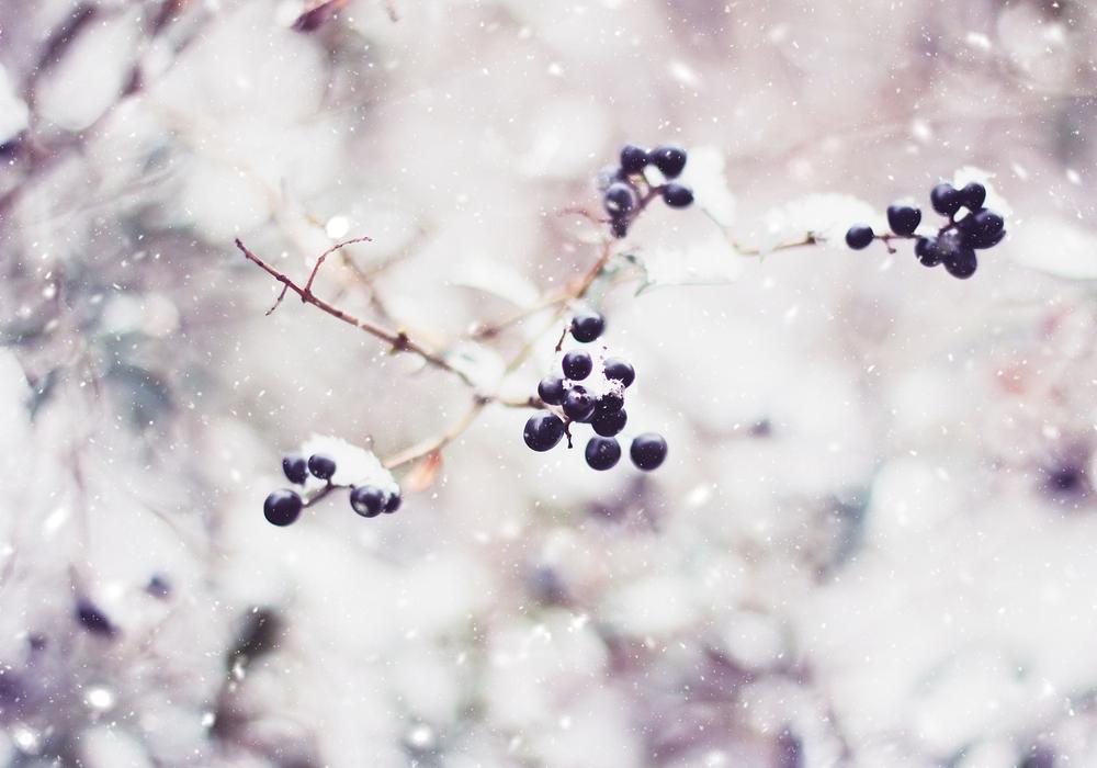 Winterliche Liebe zum Detail Foto: Nicole Reinhardt