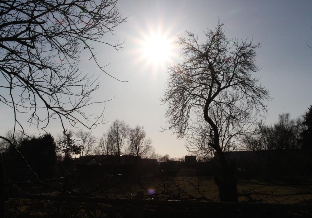Das Wetter in Peine Foto: Sina Rühland