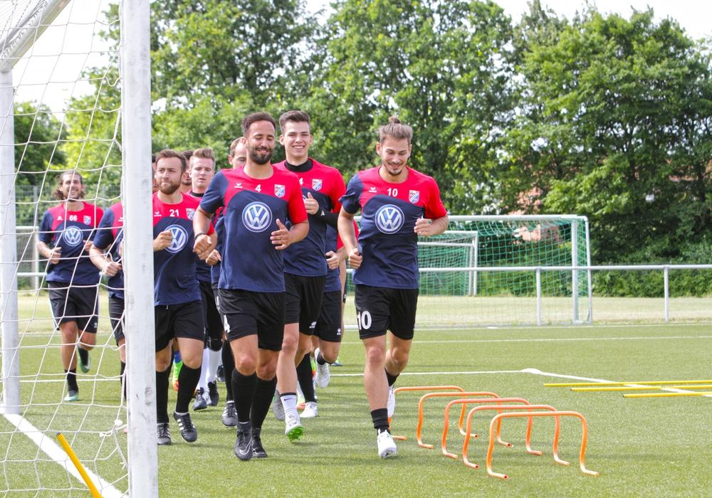 Aufgalopp bei Lupo Martini Wolfsburg. Wir haben beim neuen Trainer Detlev Dammeier nachgefragt. Fotos: Frank Vollmer / Video: Jens Bartels