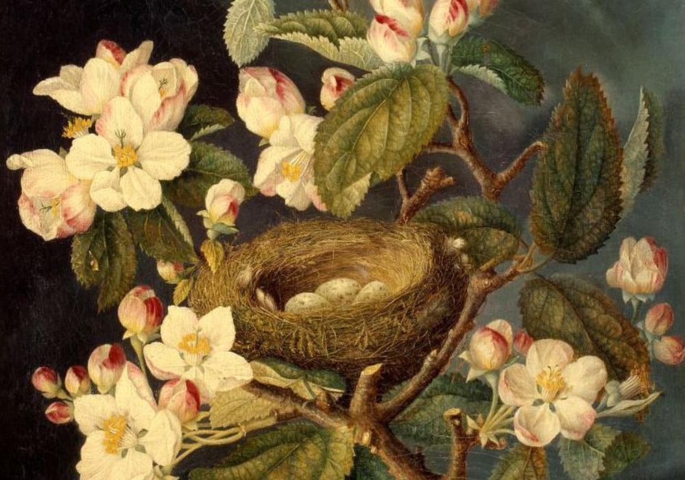 Frühlingsblüten J.H.C.Eli. Foto: Städtisches Museum Braunschweig