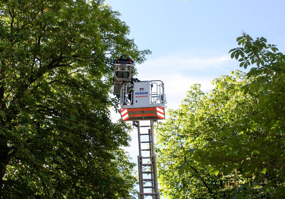 Ein Patient musste am Dienstagmorgen mittels Drehleiter aus seiner Wohnung geholt werden. Foto: Feuerwehr Bad Harzburg. Foto: Feuerwehr Bad Harzburg