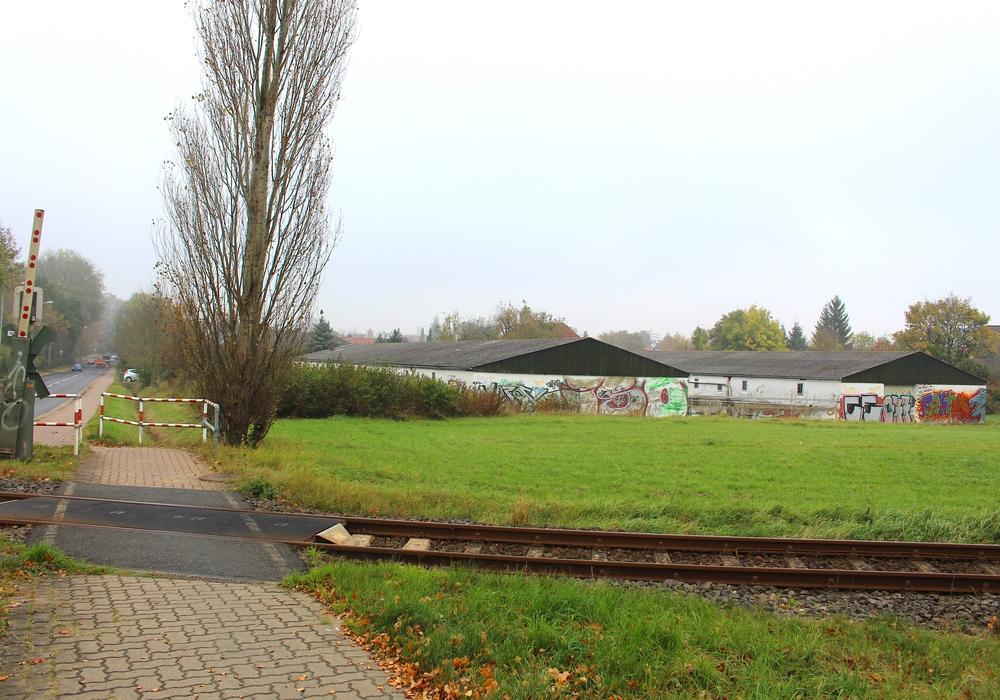Hier an der Neindorfer Straße soll bald neuer Wohnraum entstehen. Foto: Nick Wenkel
