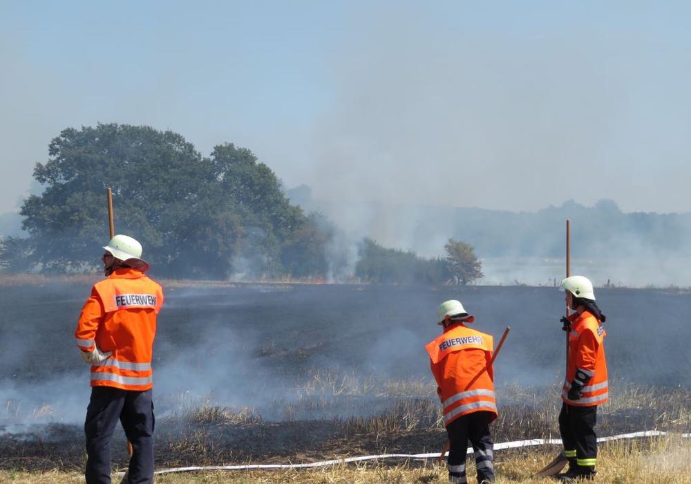 Ein fast schon gewohntes Bild in den vergangenen Tagen. Fotos: Feuerwehr Königslutter