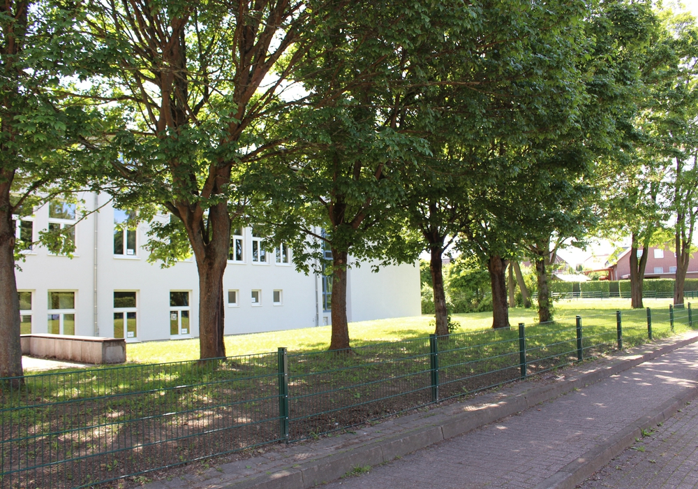 Aus der Oberschule in Calberlah wurde nun eine Realschule. Foto: Sandra Zecchino