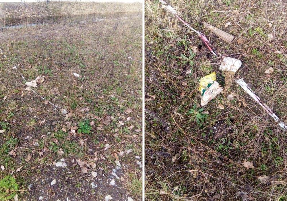 Die Fotos der Gemeinde Meine dokumentieren den Zustand der Blühwiese, bevor sie entfernt wurde. Fotos: Gemeinde Meine