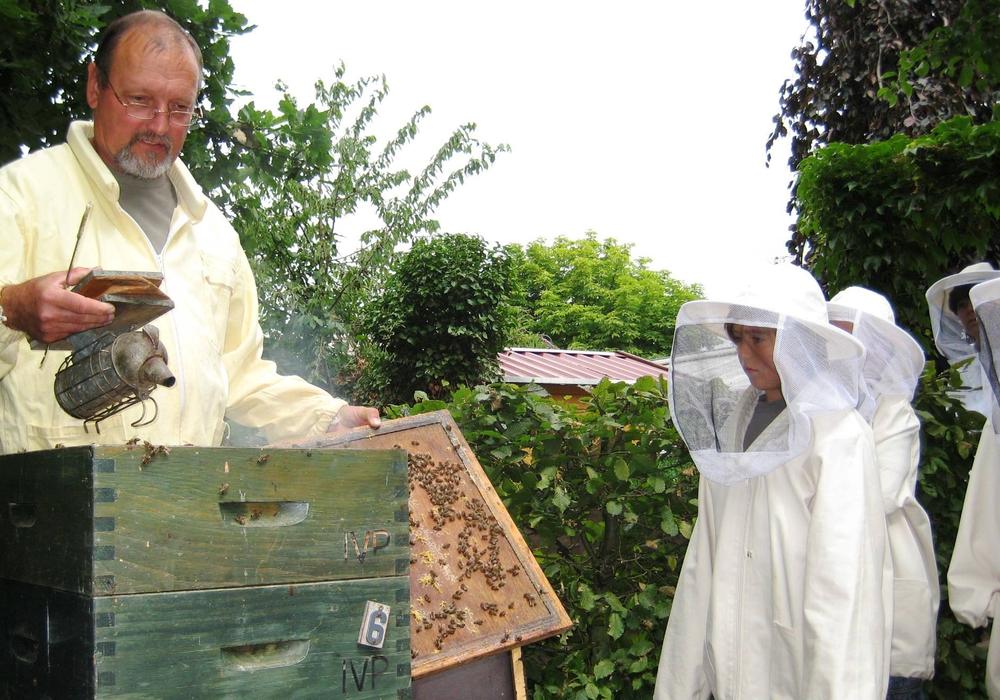 Imker Tostmann zeigt seine Bienen. Foto: Tier- und Ökogarten Peine