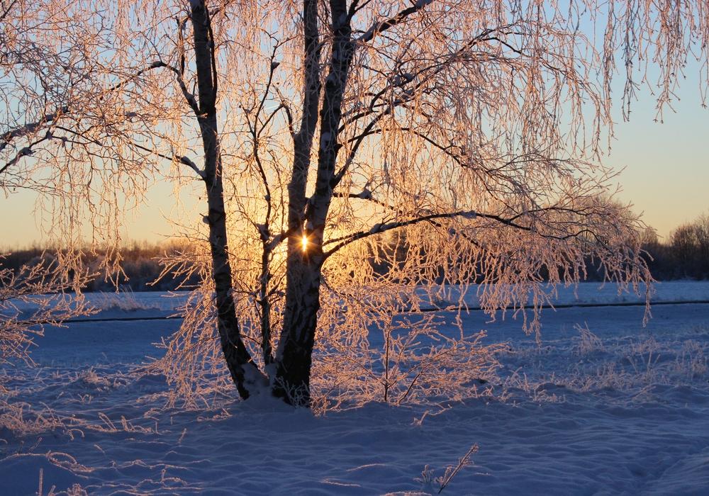 Trotz Kälte ist dieses Wochenende einiges los in Gifhorn. Symbolbild: Anke Donner