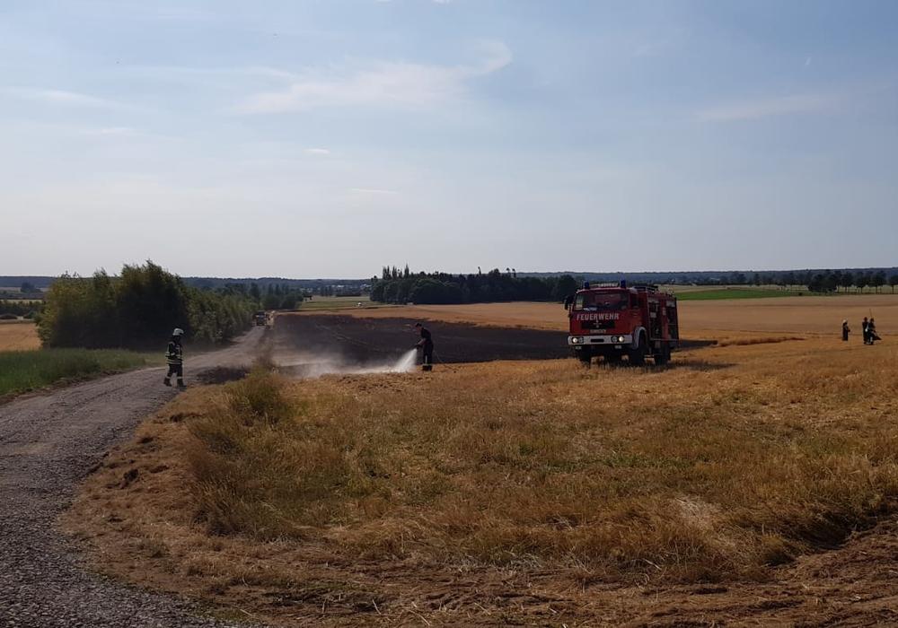 Am Nachmittag geriet ein Feld in der Nähe von Lehre in Brand. Foto: Gemeindefeuerwehr Lehre