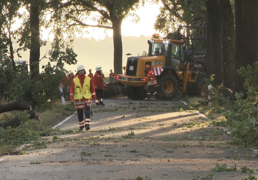 So heftig ging es im Landkreis Peine zu. Foto: Aktuell24(BM)