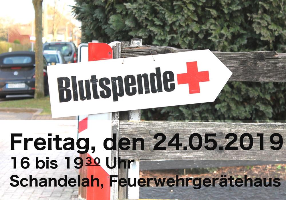 Die Feuerwehr Schandelah veranstaltet eine Blutspendenaktion und bittet um Mithilfe. Foto: Feuerwehr Schandelah