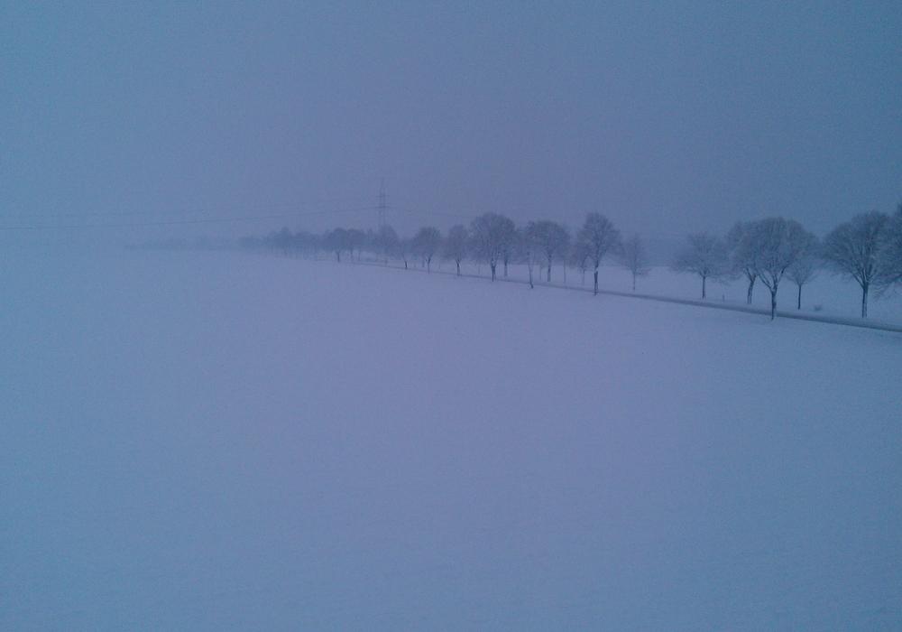 In teilen der Region schneite es stark. Symbolbild: Marc Angerstein