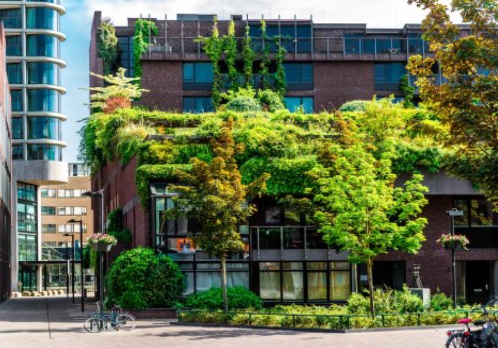 Singapur als grünes Beispiel für Braunschweig. Fotos: Dr. Rainer Mühlnickel