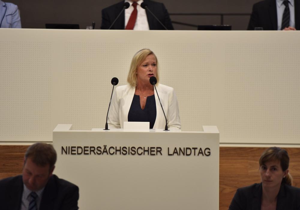 Dunja Kreiser im Landtag. Symbolfoto: SPD