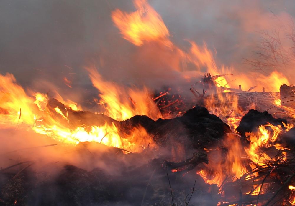 Etwa eine Stunde waren die Feuerwehrleute gegen den brennenden Müll im Einsatz. Symbolfoto: Jonas Walter