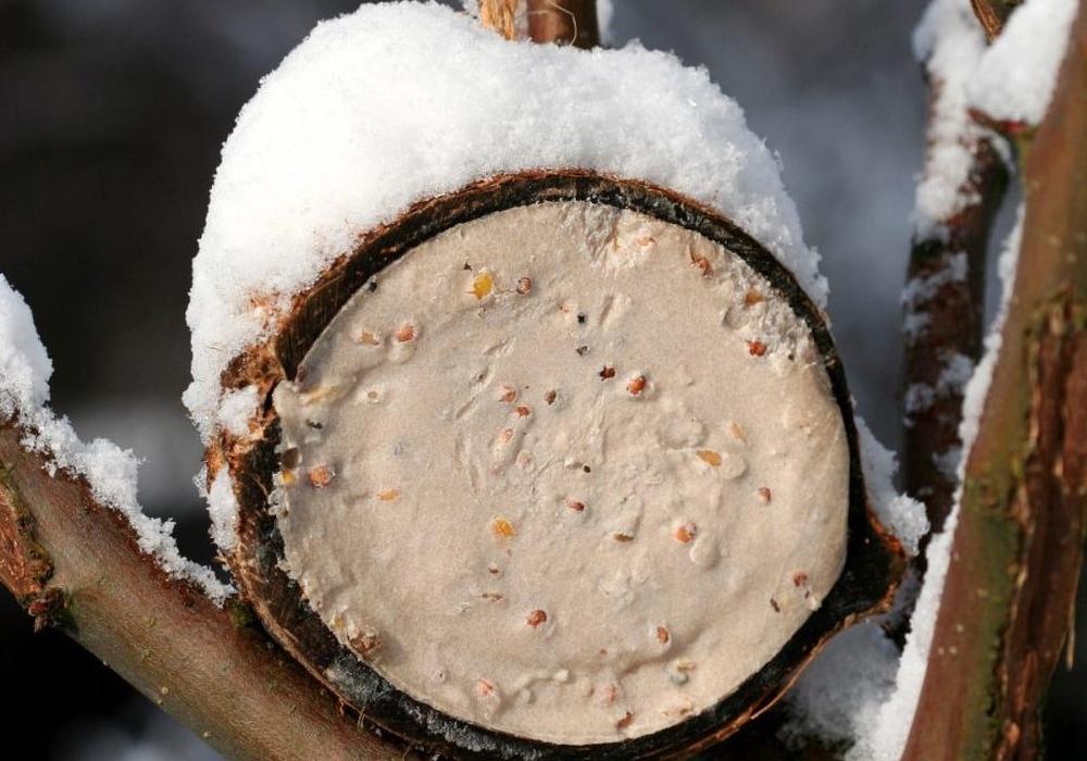 Fettfutter für Vögel zur Winterszeit. Foto: NABU/Helge May