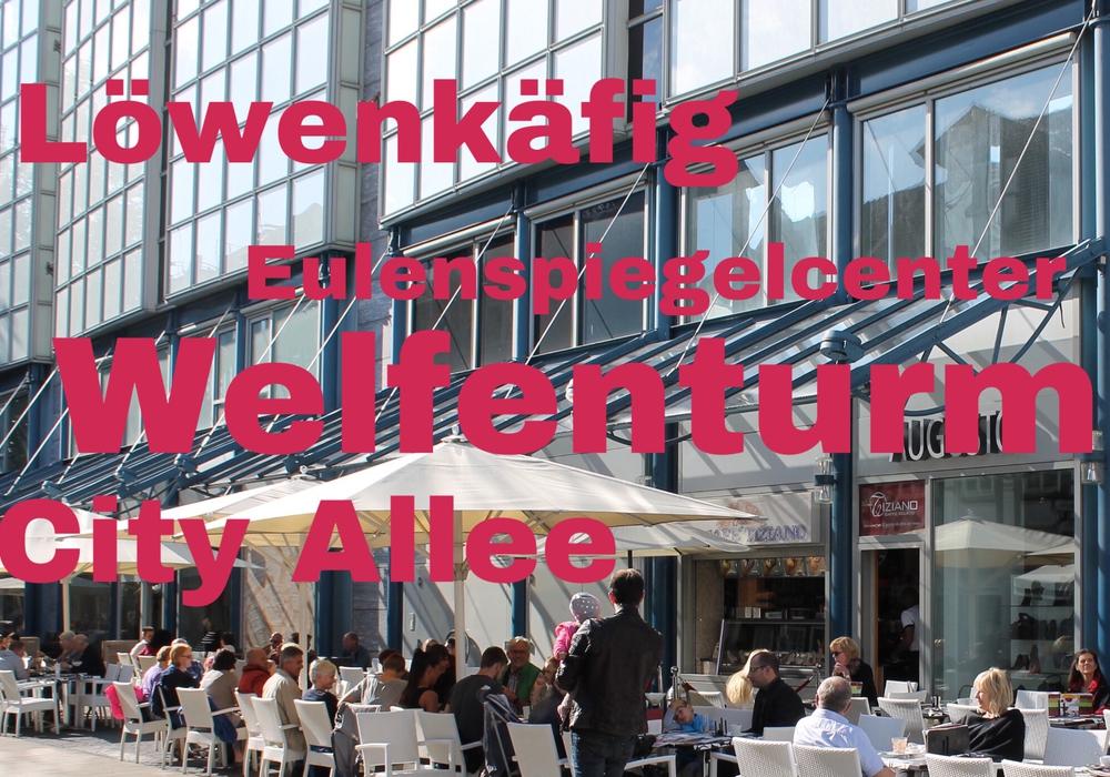 """Von """"Welfenturm"""" bis """"Löwenkäfig"""": Das sind die Vorschläge unserer Facebook-Leser. Foto: Nick Wenkel/Archiv"""