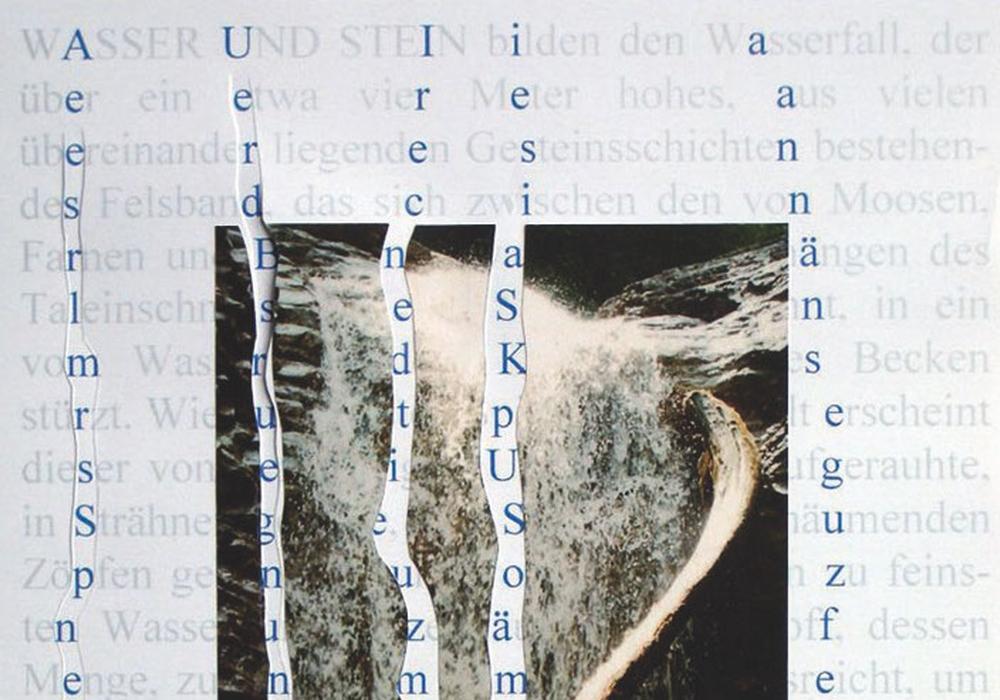Rolf Steiner, Blüte, aus: 6 Blüten, Mappe mit 6 beschrifteten Fotografien (Siebdruck) und 6 Textblättern, Köln 2010. Foto: HAB