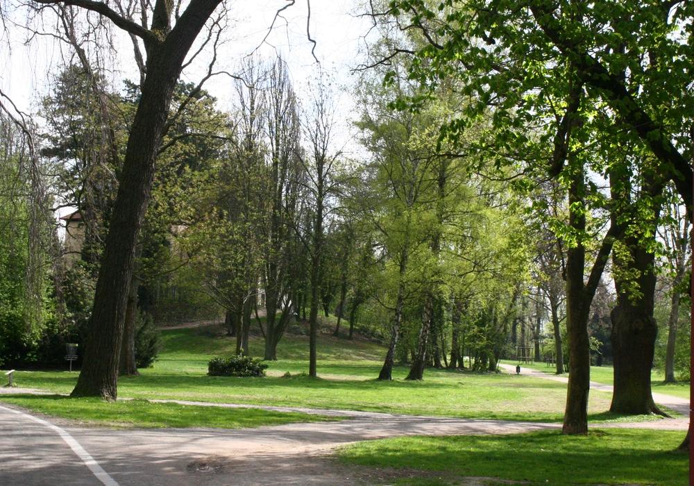 Der Seeliger-Park mit seinem alten, Schatten spendenden Baumbestand bot hierfür die ideale Örtlichkeit. Symbolfoto: Anke Donner