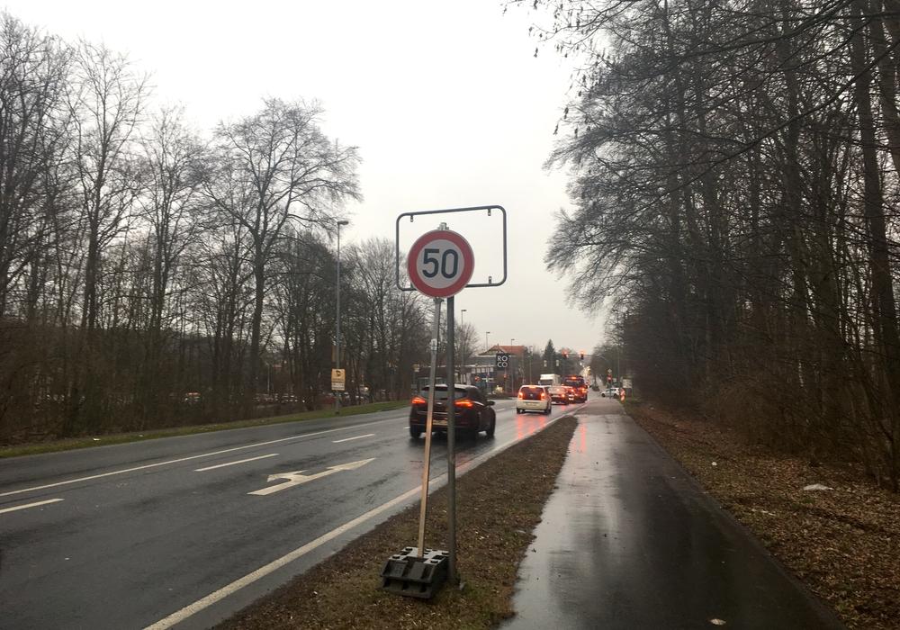 """Derzeit ersetzt ein """"50-Schild"""" das Ortseingangsschild am Neuen Weg. Foto: Alexander Dontscheff"""