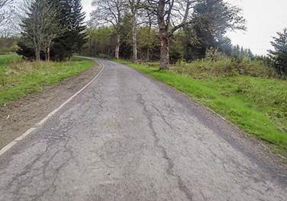 Die Niedersächsische Landesforsten sanieren die Randstraße um den Okerstause. Der Weg muss daher bis zum 19. November voll gesperrt werden. Foto: Landesforsten